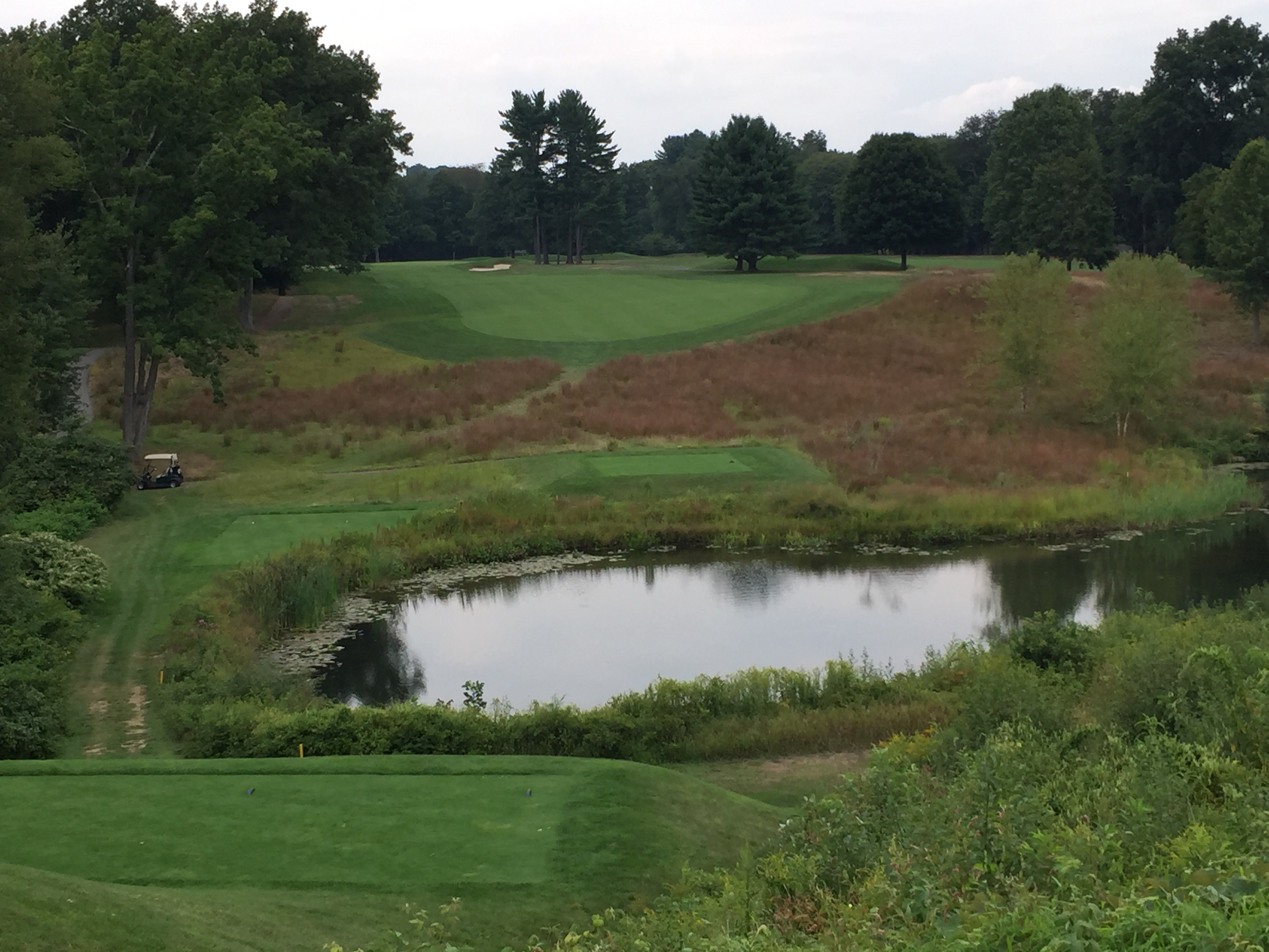 A tough par 4 with a neat right to left tee shot . . .